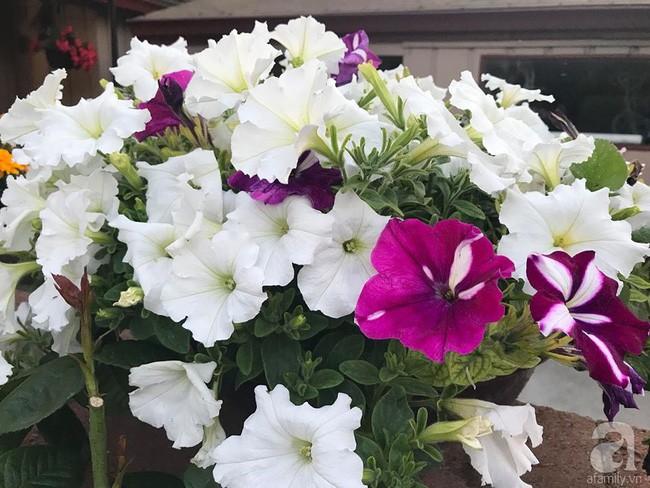Để chiều lòng vợ, chồng Mỹ thiết kế khu vườn trồng đủ các loại hoa và rau quả Việt để vợ đỡ nhớ quê hương - Ảnh 3.