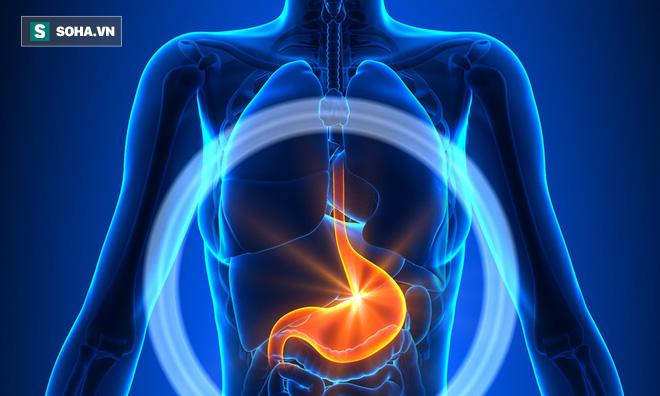 3 thời điểm vàng để chăm sóc dạ dày, tim và mạch máu: Nếu muốn khỏe hãy áp dụng ngay! - Ảnh 2.