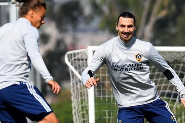Ở tuổi gần 40, Ibrahimovic đã chứng minh sư tử khác người thường thế nào? - Ảnh 6.