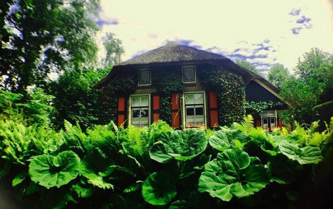 Ngôi làng không có đường đi, nhà nào nhà đó tràn ngập hoa tươi, đẹp như trong cổ tích - Ảnh 9.