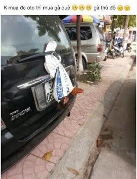 Đôi gà trống treo lủng lặng sau ô tô khiến bao người phải ngoái nhìn - Ảnh 3.