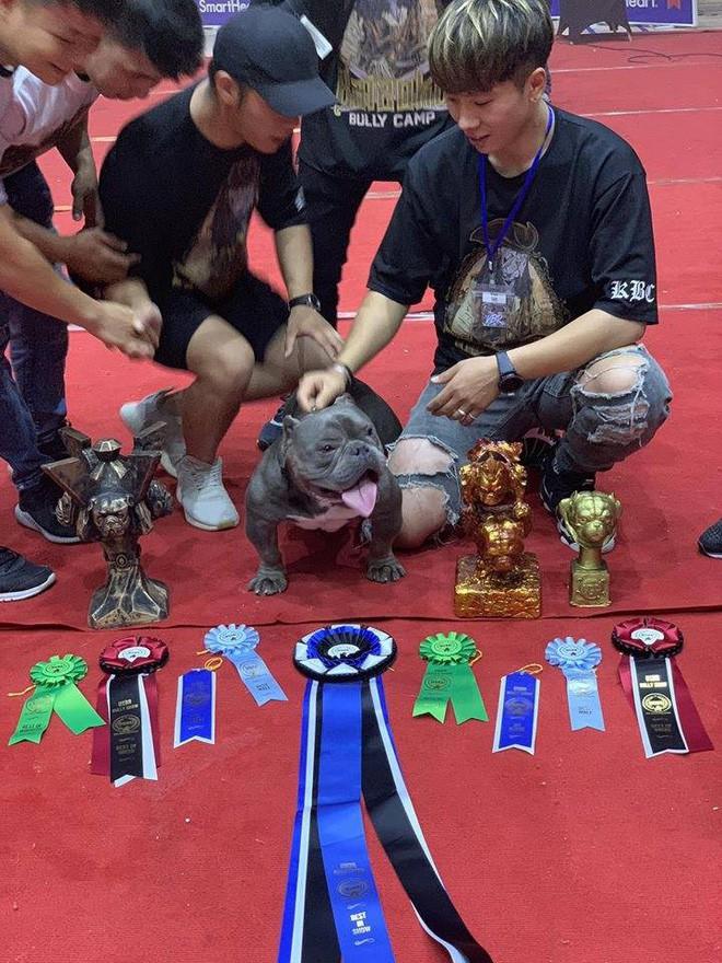Thanh niên Việt rút 2,6 tỷ trong ngân hàng, lặn lội sang nước ngoài để mua bằng được chú chó mình yêu thích - Ảnh 5.