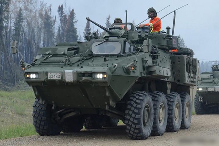 Cận cảnh xe thiết giáp chở quân LAV 6.0 được bảo vệ cực tốt của Canada - Ảnh 1.