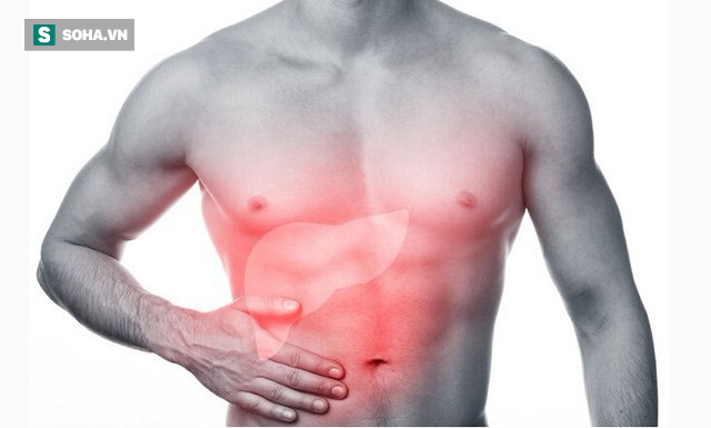 Dấu hiệu cảnh báo gan đang chứa đầy độc tố, nhiễm độc: Số 2 và 4 nhiều người gặp - Ảnh 1.