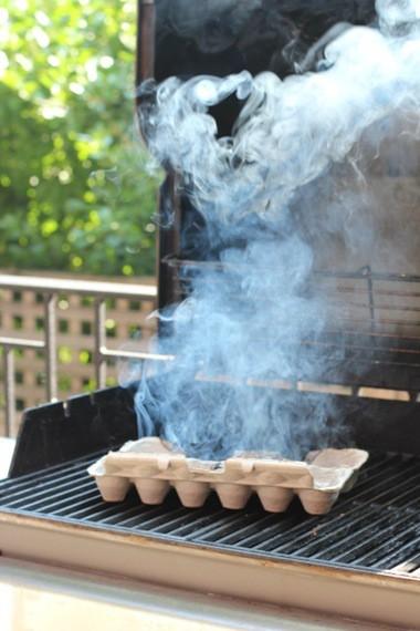 Nhà nhiều muỗi, chỉ cần đốt khay các- tông đựng trứng lên, bạn sẽ thấy hiệu quả không ngờ - ảnh 7