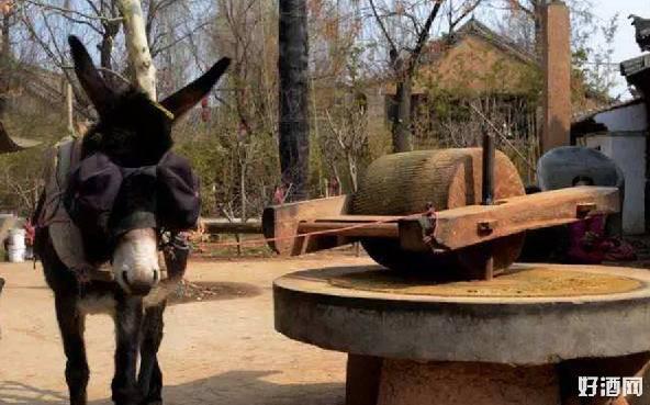 Bị ngựa lải nhải chê bai, lừa đã có một hành động khiến ngựa hối không kịp! - Ảnh 1.