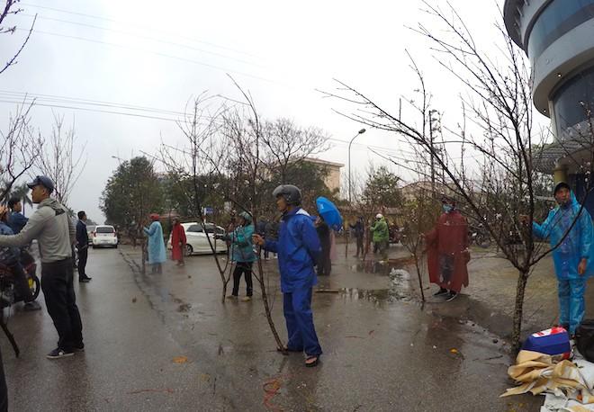 Dòng người đứng đường dầm mưa bán đào ngày cận Tết - Ảnh 4.