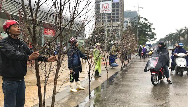Dòng người đứng đường dầm mưa bán đào ngày cận Tết - Ảnh 19.