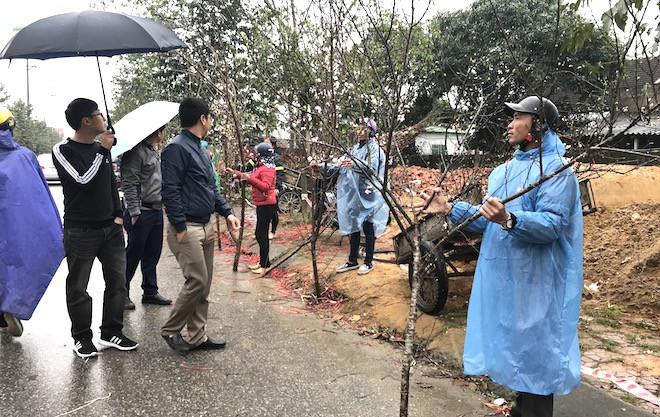 Dòng người đứng đường dầm mưa bán đào ngày cận Tết - Ảnh 13.