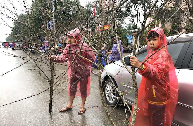 Dòng người đứng đường dầm mưa bán đào ngày cận Tết - Ảnh 9.