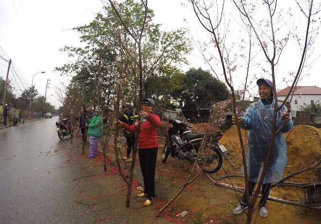 Dòng người đứng đường dầm mưa bán đào ngày cận Tết - Ảnh 6.