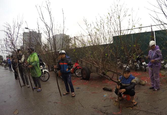 Dòng người đứng đường dầm mưa bán đào ngày cận Tết - Ảnh 12.