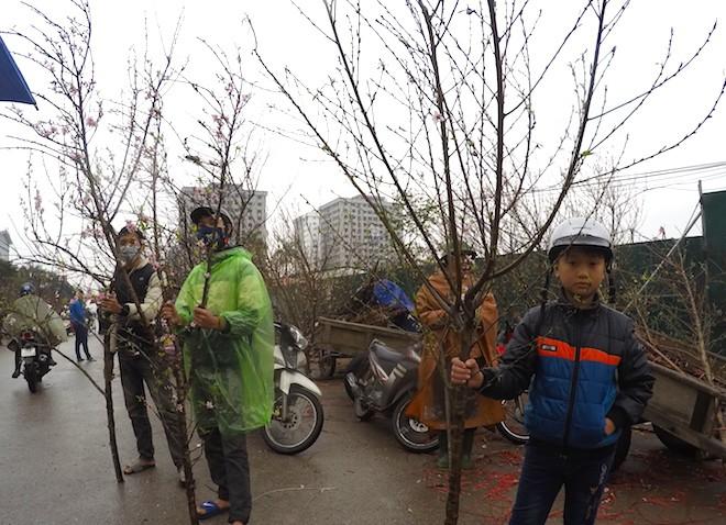 Dòng người đứng đường dầm mưa bán đào ngày cận Tết - Ảnh 10.
