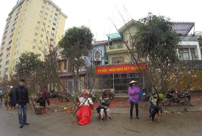 Dòng người đứng đường dầm mưa bán đào ngày cận Tết - Ảnh 14.