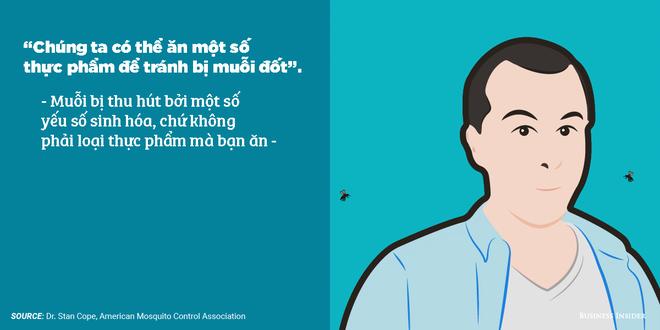 7 quan niệm sai lầm về phòng tránh muỗi: Hóa ra trồng sả có thể phản tác dụng - Ảnh 1.