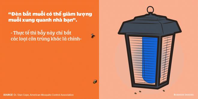 7 quan niệm sai lầm về phòng tránh muỗi: Hóa ra trồng sả có thể phản tác dụng - Ảnh 4.