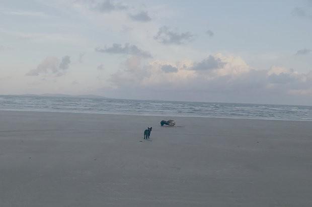 Bất ngờ tìm thấy quái vật biển không mắt, một chân trôi dạt vào bờ - Ảnh 3.