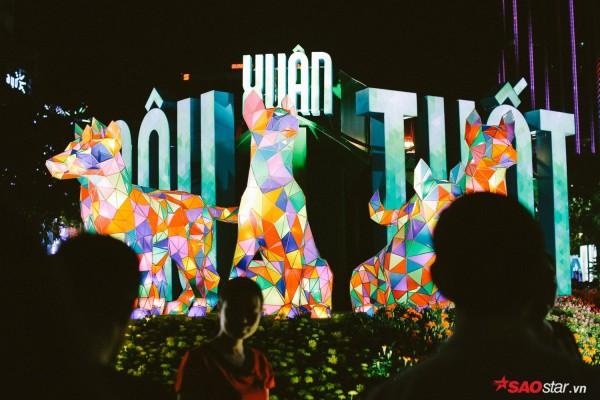 Hàng ngàn người chen chúc trên đường hoa Nguyễn Huệ đêm khai mạc - Ảnh 15.