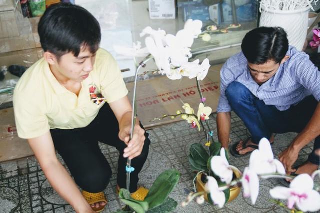 1 triệu đồng một cành lan, người Sài Gòn đổ xô mua - Ảnh 7.