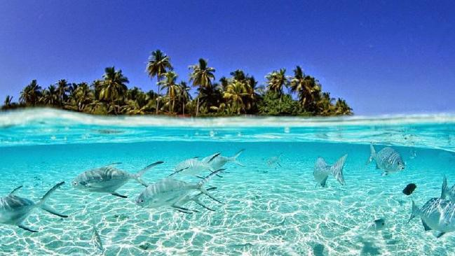 Nước biển ngày càng dâng, vậy mà hòn đảo này đang có phản ứng rất lạ khiến khoa học phải đau đầu 2