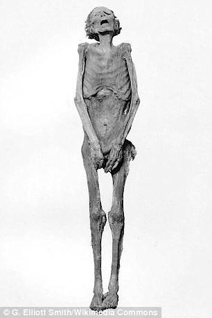 Xác ướp la hét bí ẩn và âm mưu đáng sợ trong Hoàng gia Ai Cập cách đây 3.000 năm - Ảnh 2.