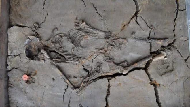 Phát hiện ngôi mộ trẻ em ngàn năm tuổi, các nhà khoa học sững sờ khi thấy hình ảnh này - Ảnh 1.