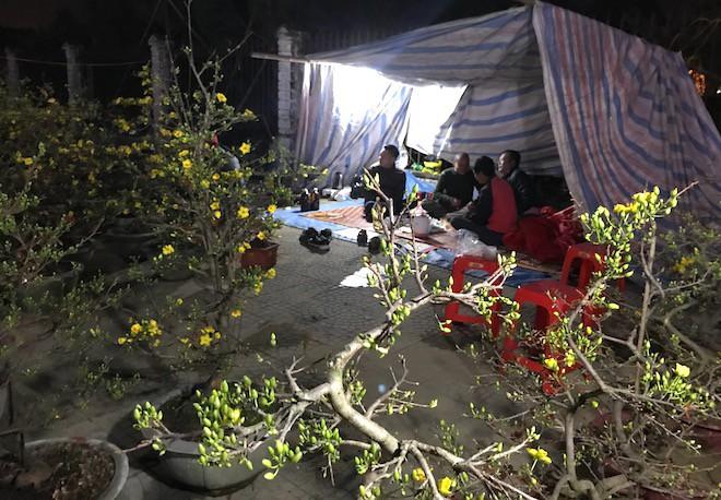 Trắng đêm ngồi co ro đốt củi sưởi ấm để canh đào, quất, hoa Tết 21