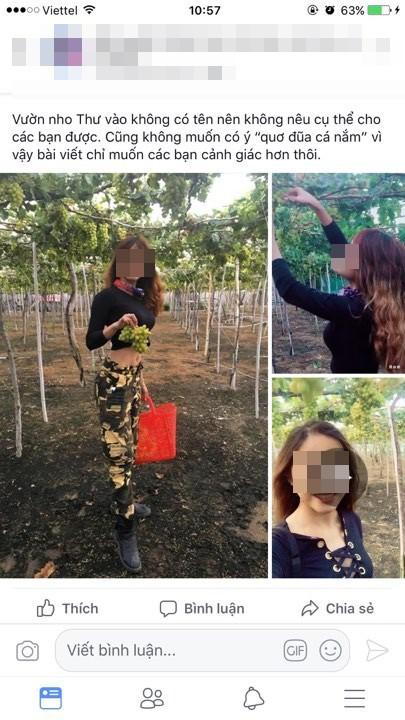 Ngửa cổ ăn nho trên giàn cây, nữ phượt thủ bị bóc phốt ngược sau khi tố chủ vườn Ninh Thuận - ảnh 1
