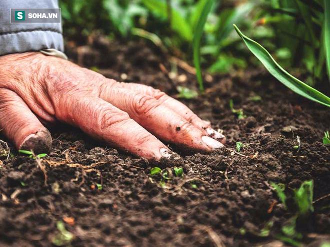 Thế hệ kháng sinh mới có nguồn gốc từ lòng đất: Cứu cánh mới trong tình trạng kháng thuốc  - Ảnh 2.