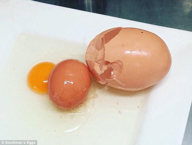 Quả trứng khổng lồ to như nắm đấm, đến lúc đập ra còn có một điều bất ngờ hơn - Ảnh 5.