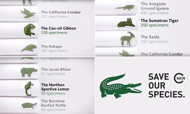 Sau hơn 80 năm, Lacoste quyết định thay đổi biểu tượng cá sấu huyền thoại vì lý do bất ngờ - Ảnh 5.