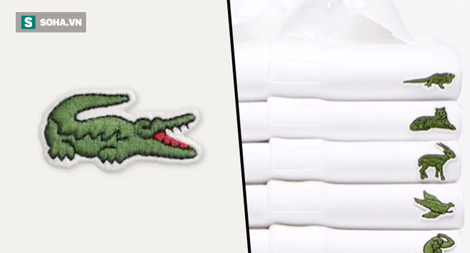 Sau hơn 80 năm, Lacoste quyết định thay đổi biểu tượng cá sấu huyền thoại vì lý do bất ngờ - Ảnh 3.