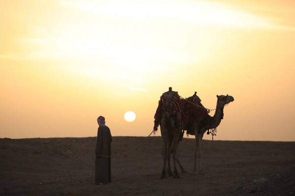 Lấy cảm hứng từ Nhà giả kim, chàng trai này đã đến Ai Cập với toàn bộ nhiệt huyết tuổi trẻ - Ảnh 22.