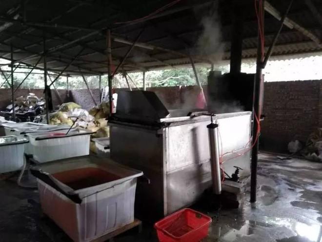 Tin không vui với các tín đồ ẩm thực: TQ phát hiện xưởng chế biến 2 tấn chân gà siêu bẩn, chứa chất phụ gia cấm - Ảnh 3.