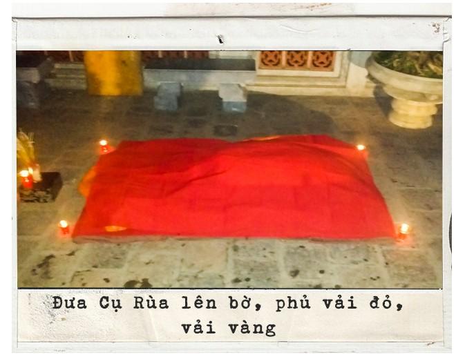 Lần đầu tiết lộ những ngày cuối đời của Cụ Rùa và cuộc lột xác để trở lại Hồ Gươm - Ảnh 4.