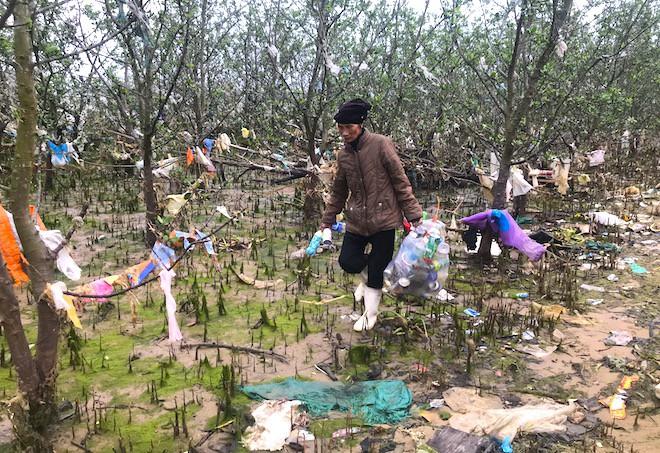 """Rừng """"cây rác"""" lủng lẳng ven sông Lam khiến nhiều người rùng mình - Ảnh 14."""