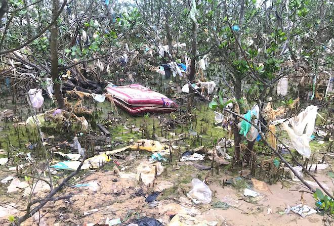 """Rừng """"cây rác"""" lủng lẳng ven sông Lam khiến nhiều người rùng mình - Ảnh 6."""