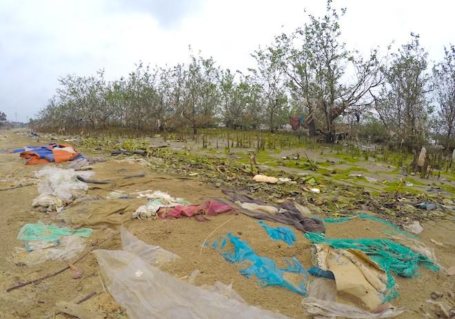 """Rừng """"cây rác"""" lủng lẳng ven sông Lam khiến nhiều người rùng mình - ảnh 1"""