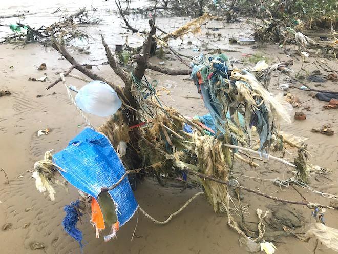 """Rừng """"cây rác"""" lủng lẳng ven sông Lam khiến nhiều người rùng mình - ảnh 3"""