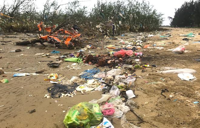 """Rừng """"cây rác"""" lủng lẳng ven sông Lam khiến nhiều người rùng mình - Ảnh 3."""