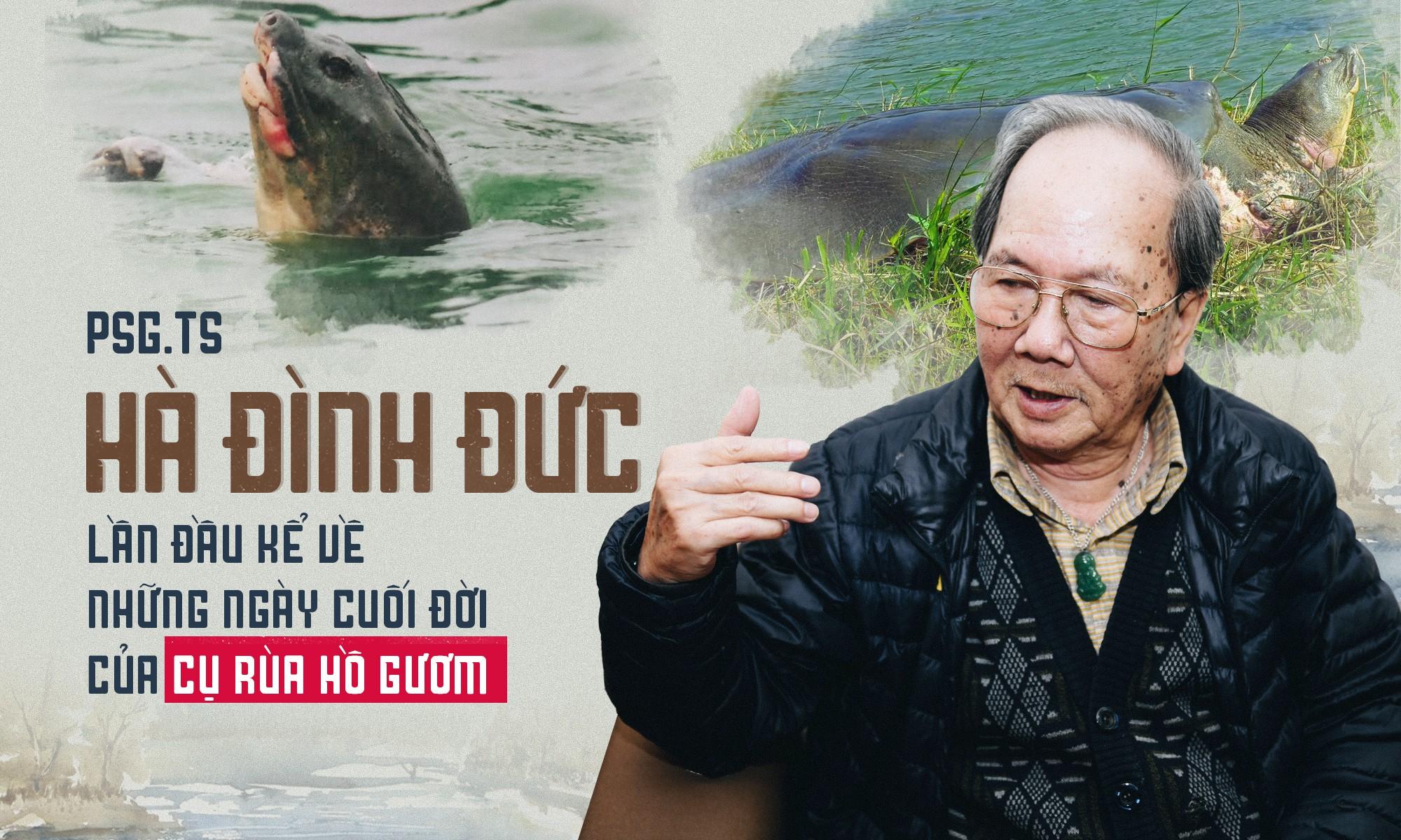 ột sáng cuối xuân, chúng tôi tìm đến PGS.TS Hà Đình Đức. Trong nhà ông treo cơ man ảnh về Cụ Rùa Hồ Gươm, và sách. Ông cười hiền lành.
