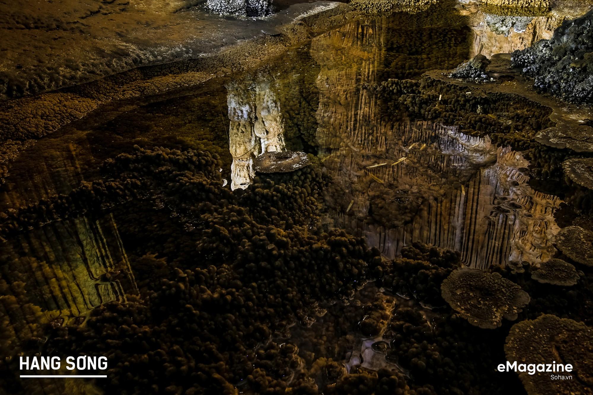 Bên trong hang động san hô hàng triệu năm tuổi trên đỉnh núi duy nhất Việt Nam - Ảnh 13.
