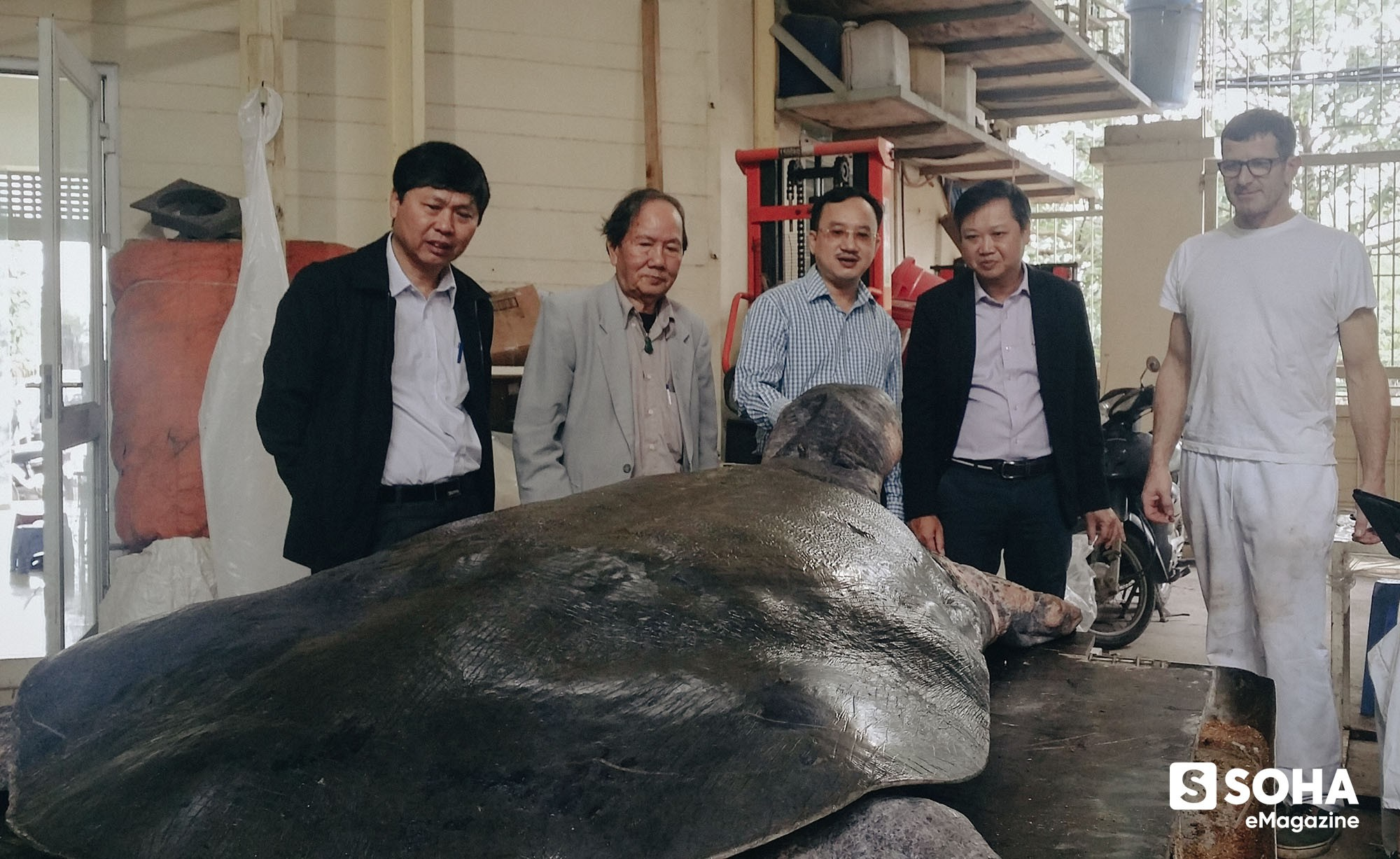 Lần đầu tiết lộ những ngày cuối đời của Cụ Rùa và cuộc lột xác để trở lại Hồ Gươm - Ảnh 15.