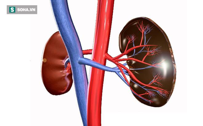Suy thận rất nguy hiểm: Những dấu hiệu nhận biết bệnh mà ai cũng nên thuộc nằm lòng - Ảnh 1.