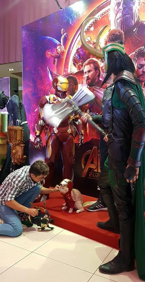 Khách mời đặc biệt gây sốt hơn cả sao Việt tại họp báo phim bom tấn Avengers - Ảnh 1.