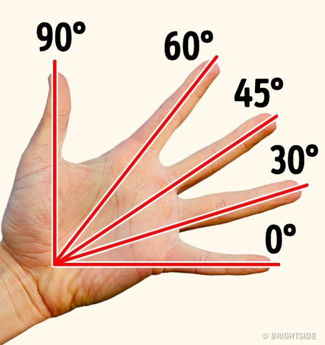 9 sự thật thú vị về cuộc sống khiến ai cũng ngỡ ngàng, số 1 biết rồi đảm bảo giơ tay thử luôn - Ảnh 1.