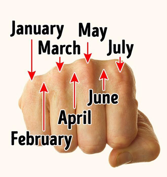 9 sự thật thú vị về cuộc sống khiến ai cũng ngỡ ngàng, số 1 biết rồi đảm bảo giơ tay thử luôn - Ảnh 2.