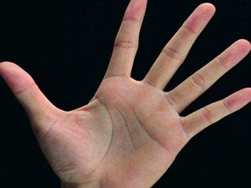 Bàn tay mà có 12 dấu hiệu này, bạn sẽ phú quý giàu sang cả đời, đặc biệt số 10 rất hiếm gặp - Ảnh 2.