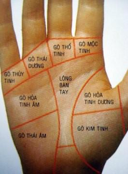Bàn tay mà có 12 dấu hiệu này, bạn sẽ phú quý giàu sang cả đời, đặc biệt số 10 rất hiếm gặp - Ảnh 11.