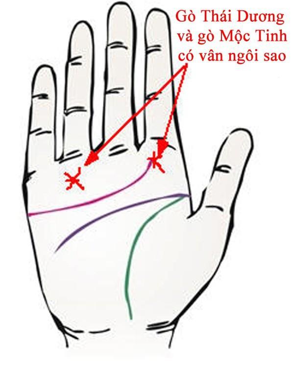 Bàn tay mà có 12 dấu hiệu này, bạn sẽ phú quý giàu sang cả đời, đặc biệt số 10 rất hiếm gặp - Ảnh 3.